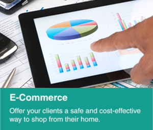 E-commerce: offer your clients a safe and cost effective way to shop from their home